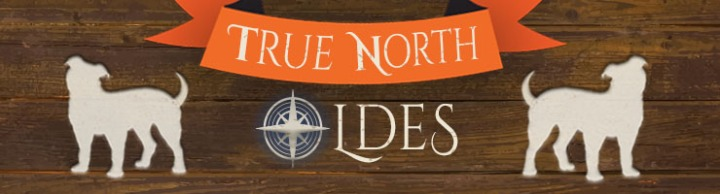 true north oldes banner with blue6